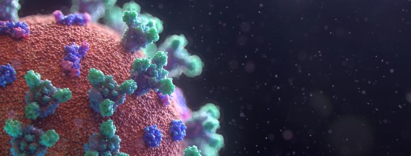 Visualization of the Coronavirus